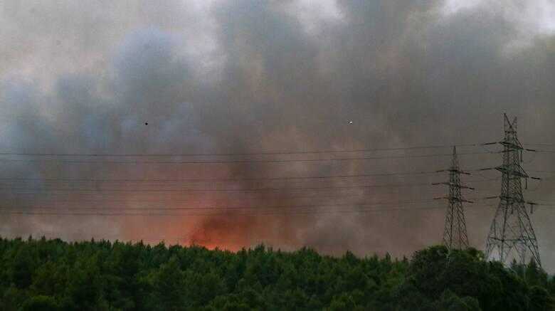 Εφιάλτης χωρίς τέλος: Νέα φωτιά στην Ελασσόνα - Ενισχύθηκαν οι δυνάμεις στη Σπάρτη
