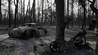 Οι πυρκαγιές στην Ελλάδα με το φακό του Αssociated Press