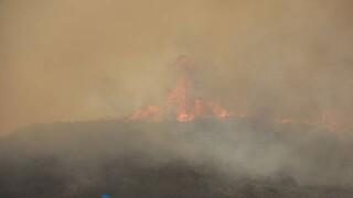 Φωτιά στη Μεσσηνία: «Μάχη» σε δύο πύρινα μέτωπα