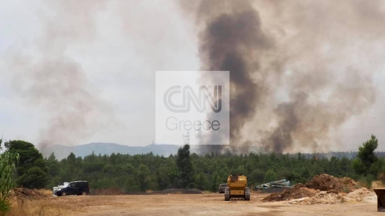 https://cdn.cnngreece.gr/media/news/2021/08/06/276988/photos/snapshot/fotia-1.jpg