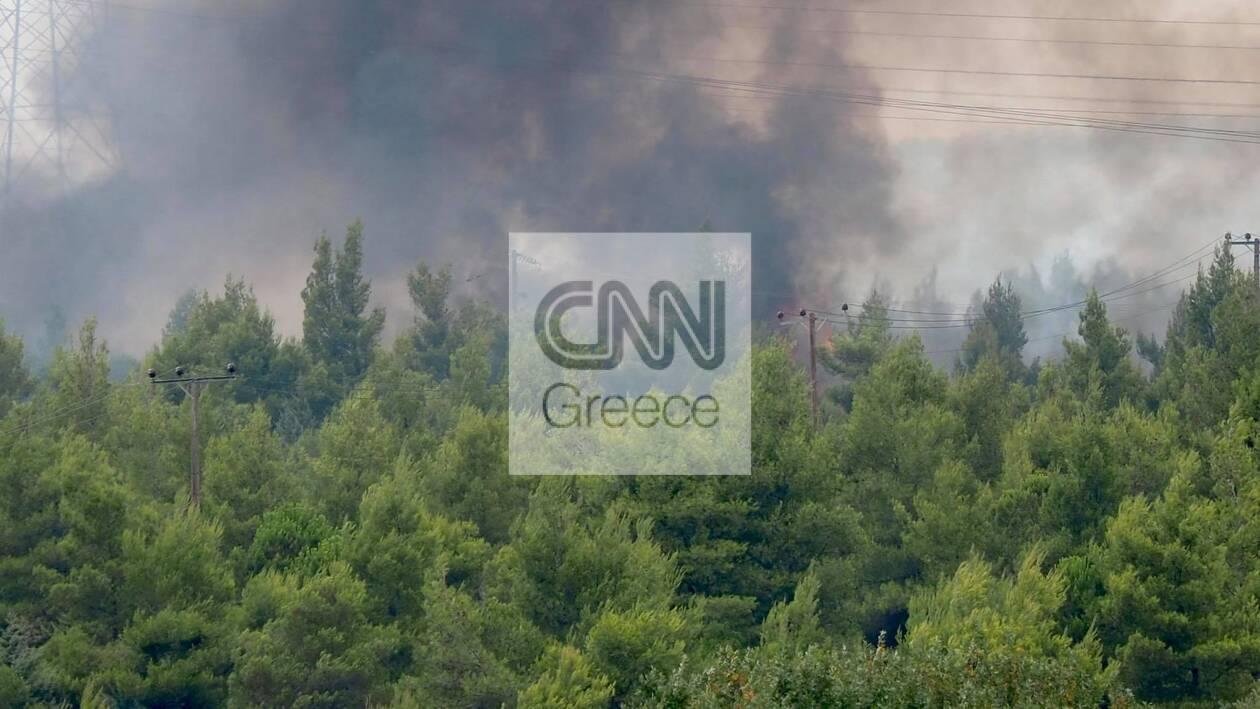 https://cdn.cnngreece.gr/media/news/2021/08/06/276988/photos/snapshot/fotia-2.jpg