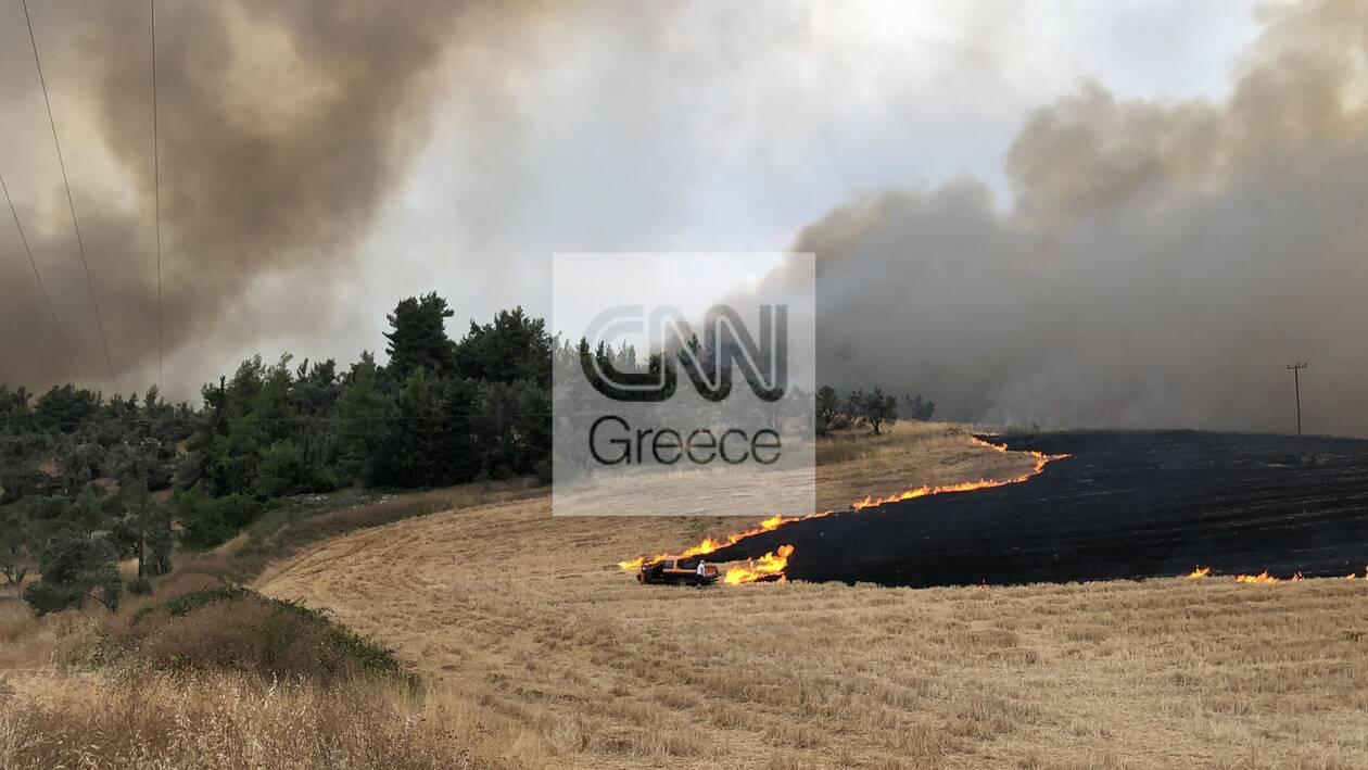 https://cdn.cnngreece.gr/media/news/2021/08/06/277016/photos/snapshot/230442258_352069609884314_3600318963023739572_n.jpg