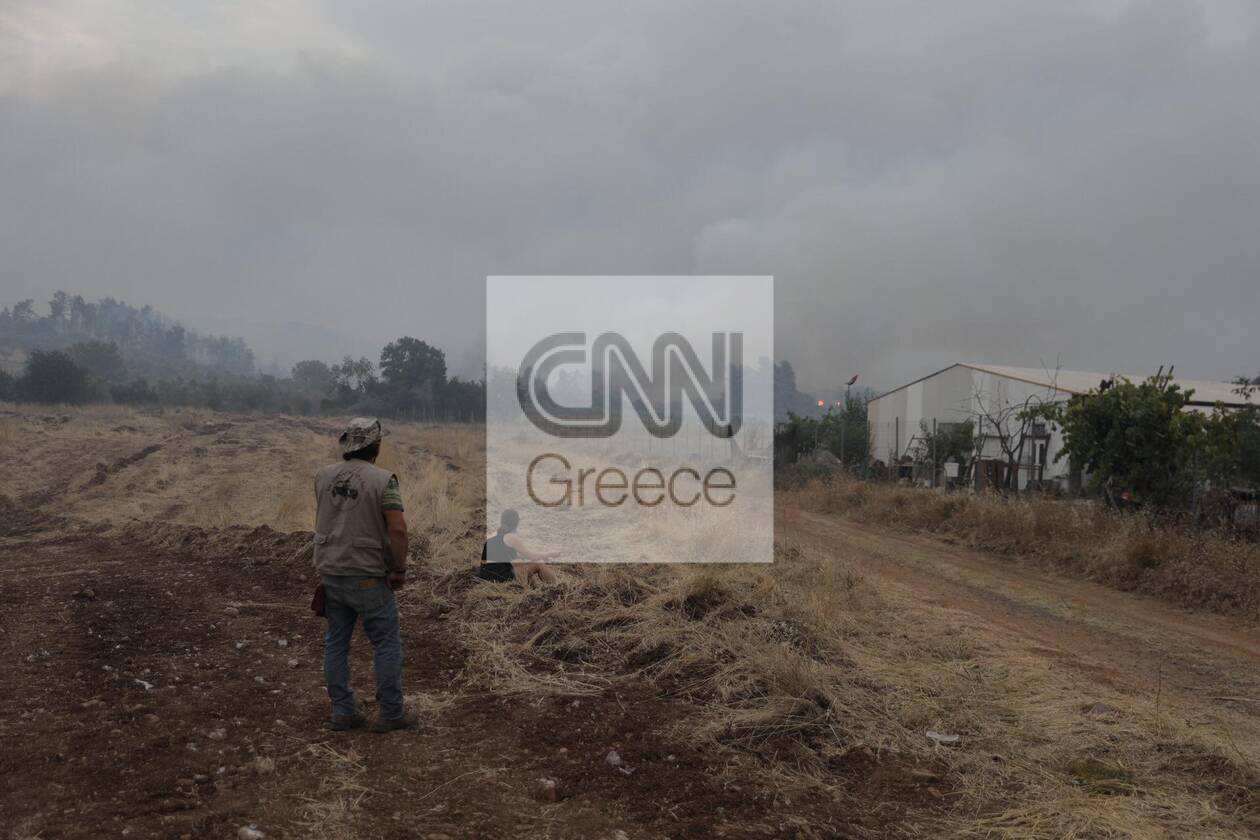 https://cdn.cnngreece.gr/media/news/2021/08/06/277016/photos/snapshot/strofilia-leyteris1.jpg