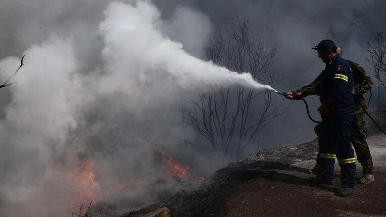 Φωτιά Ηλεία: Κοντά σε σπίτια στη Νεμούτα οι φλόγες - Έκκληση των κατοίκων για βοήθεια