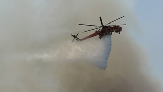 Φωτιά στο Σούνιο - Μέσα στον οικισμό οι φλόγες