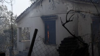 Φωτιές Αττική: Προσωρινή φιλοξενία σε πυρόπληκτους στις κατασκηνώσεις του Αγίου Ανδρέα