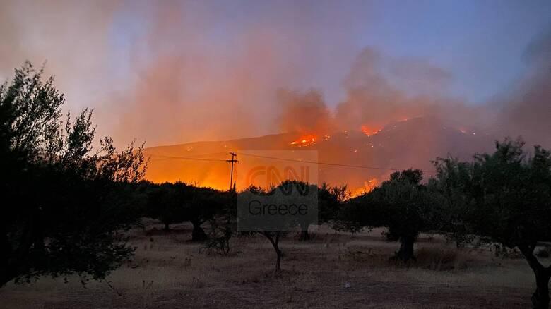 Φωτιά στη Φωκίδα: Εκκενώθηκαν Πάνορμος, Όρμος Λεμονιάς και Άγιοι Πάντες