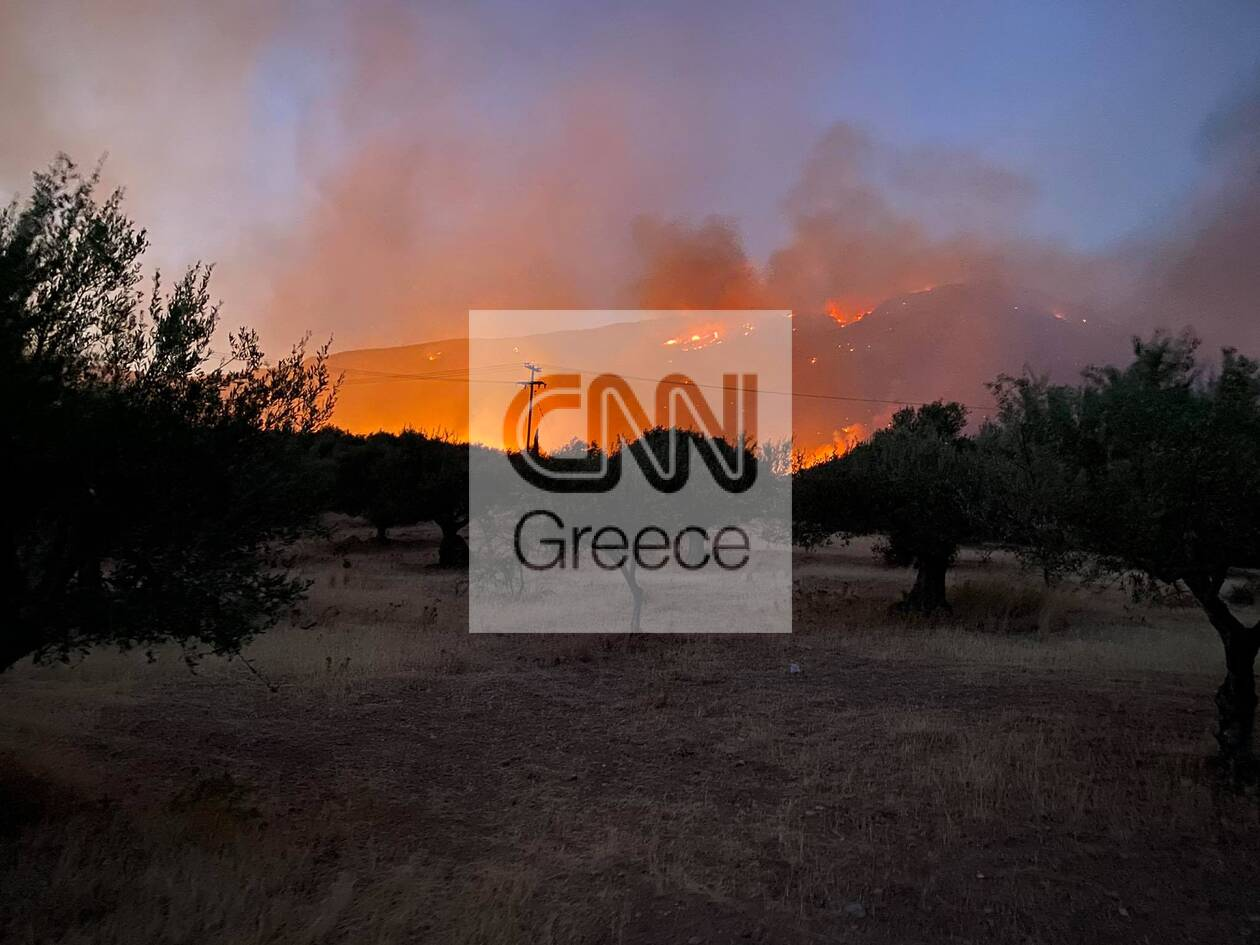 https://cdn.cnngreece.gr/media/news/2021/08/06/277049/photos/snapshot/erateinh-55473996469_n.jpg