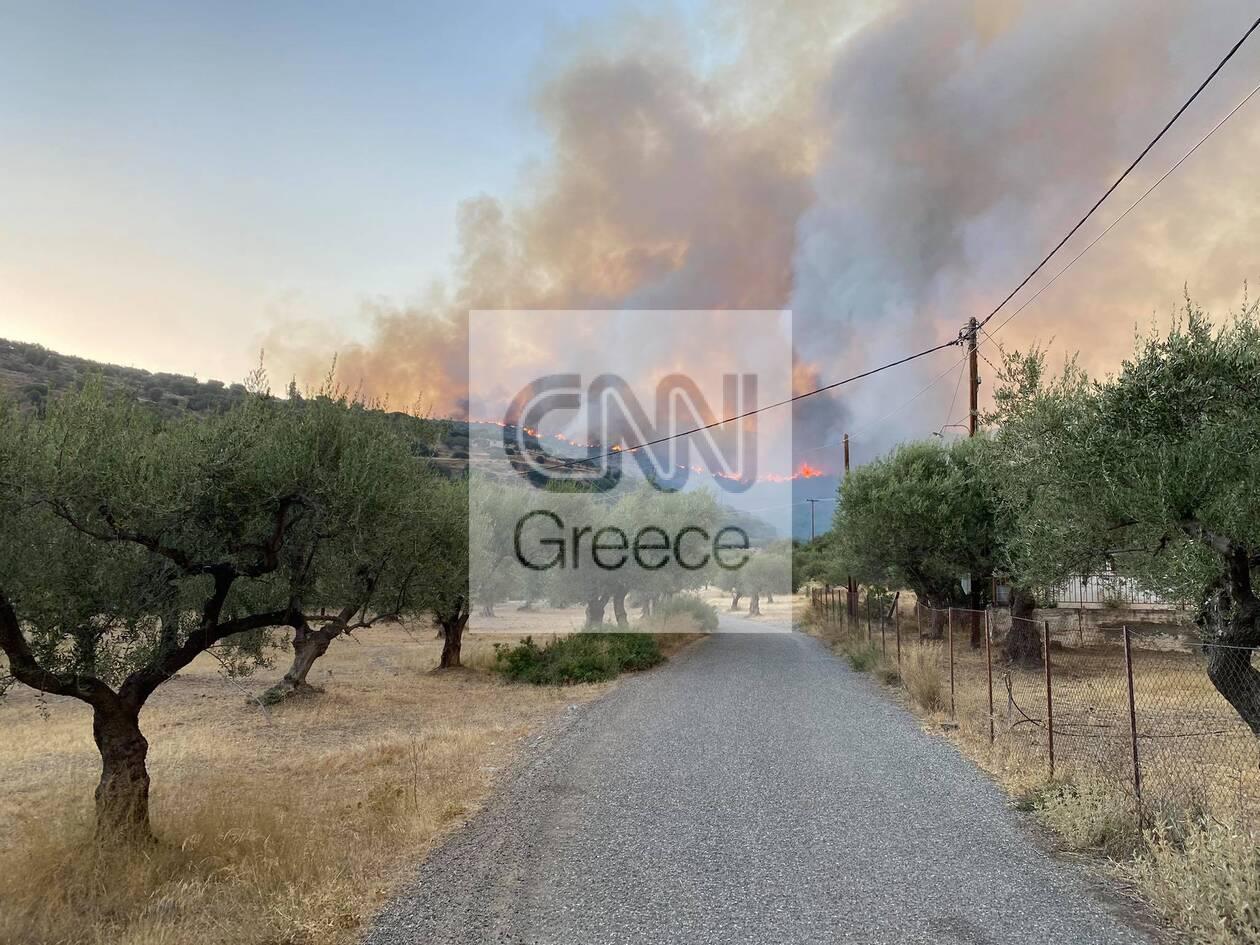 https://cdn.cnngreece.gr/media/news/2021/08/06/277049/photos/snapshot/erateini-_420738859292614_2888960739160149967_n.jpg