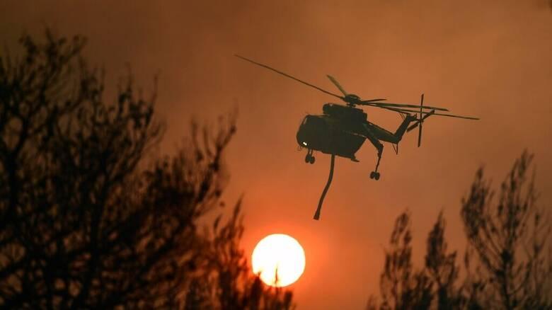 Στις φλόγες ξανά και η Σικελία - «Κύμα» εμπρησμών στη νότια και κεντρική Ιταλία