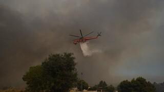 Πυρκαγιά Αττική: Προγραμματισμένες διακοπές ρεύματος το απόγευμα της Παρασκευής