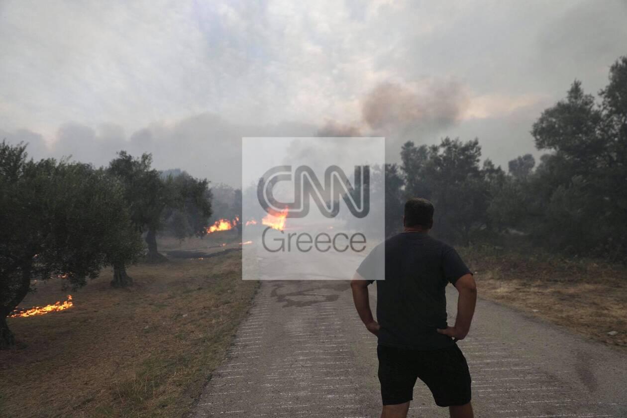 https://cdn.cnngreece.gr/media/news/2021/08/06/277073/photos/snapshot/strofilia-leyteris.jpg