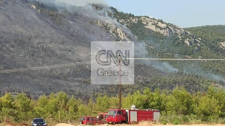 Φωτιές Αττική: Μάχη με τις αναζωπυρώσεις σε Βαρυμπόμπη, Θρακομακεδόνες, Μαλακάσα