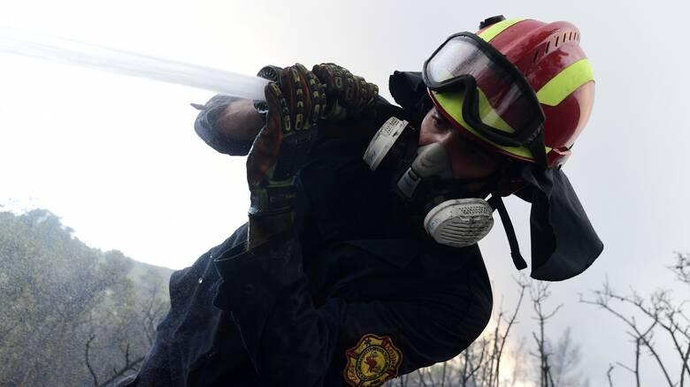 Σε πύρινο κλοιό η Ελλάδα: Οι δυνάμεις της Πυροσβεστικής που επιχειρούν στα δεκάδες μέτωπα