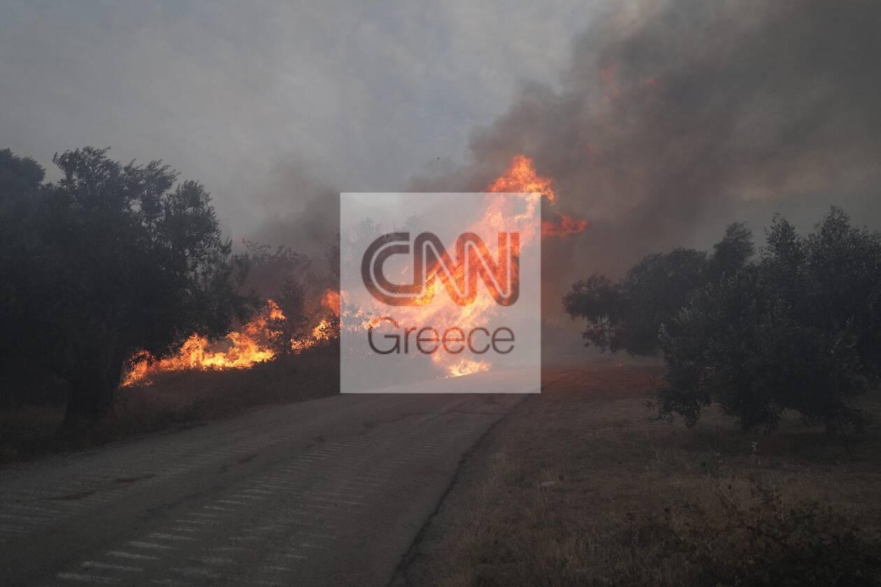https://cdn.cnngreece.gr/media/news/2021/08/07/277083/photos/snapshot/231698254_572510007448224_3542842526295798799_n.jpg