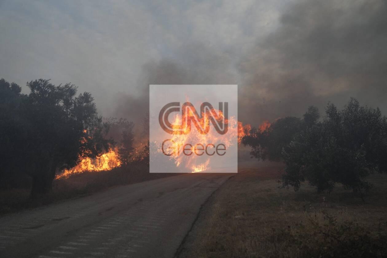 https://cdn.cnngreece.gr/media/news/2021/08/07/277083/photos/snapshot/232392619_132101342356742_343063316966159639_n.jpg