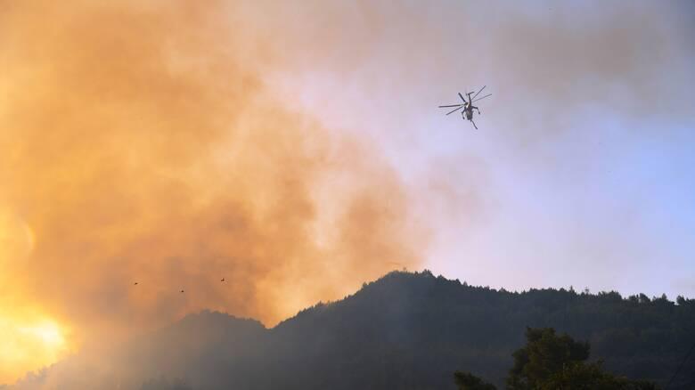 Φωτιές: Εναέρια μέσα στη μάχη στα πύρινα μέτωπα της Ηλείας - Σε εξέλιξη η φωτιά στην ανατολική Μάνη