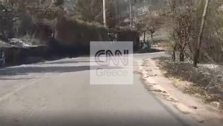 Φωτιές Αττική - Το CNN Greece στον Άγιο Στέφανο: Εικόνα απόλυτης καταστροφής