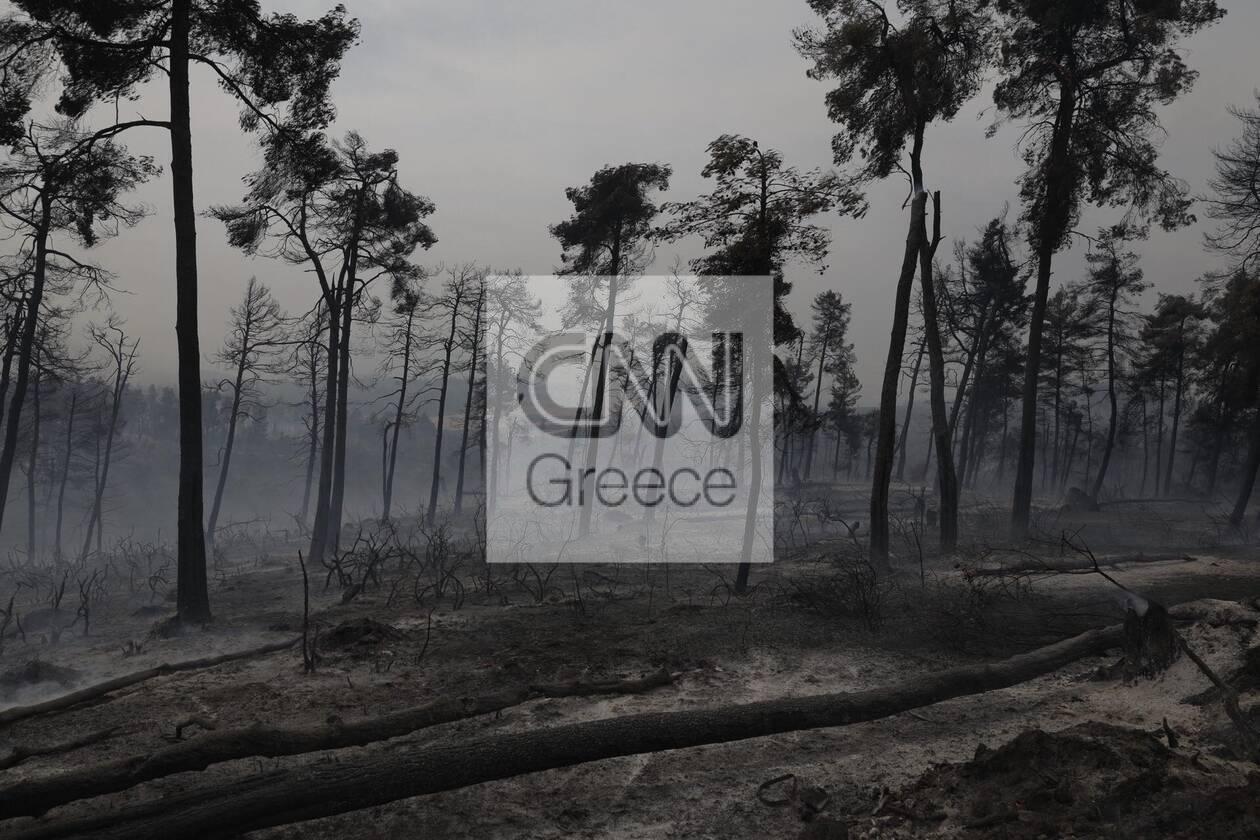 https://cdn.cnngreece.gr/media/news/2021/08/07/277101/photos/snapshot/610d0b3c679c5.jpg