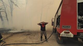 Φωτιές Εύβοια: Καλά στην υγεία του ο πυροσβέστης που τραυματίστηκε στη Λίμνη