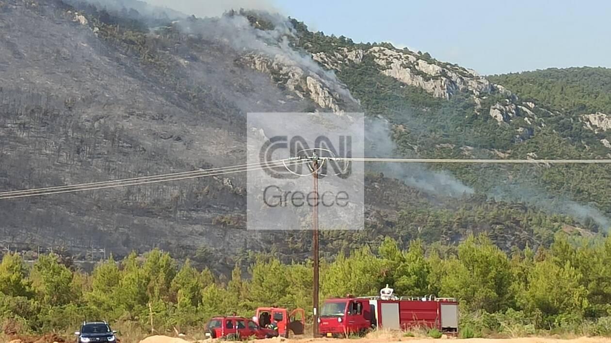 https://cdn.cnngreece.gr/media/news/2021/08/07/277114/photos/snapshot/fotia-24.jpg
