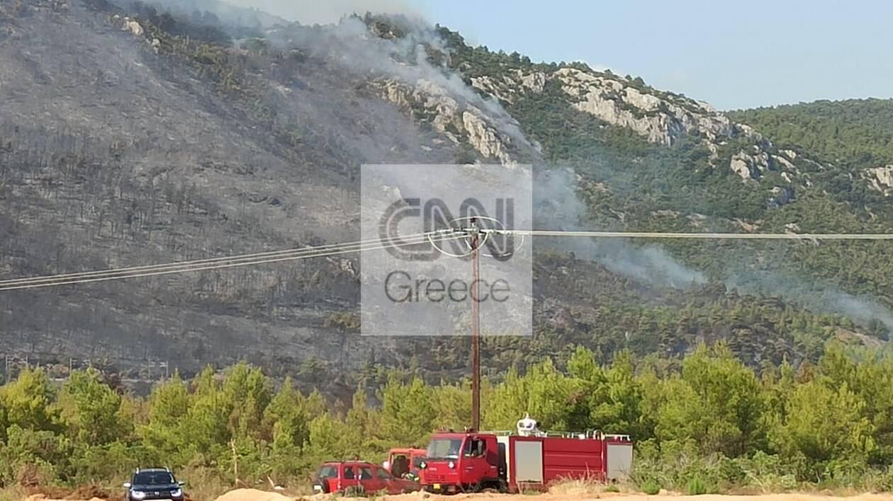 https://cdn.cnngreece.gr/media/news/2021/08/07/277114/photos/snapshot/fotia-a.jpg