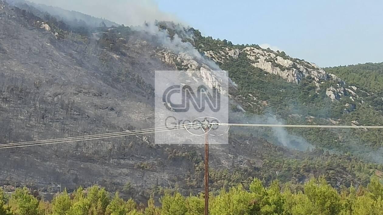 https://cdn.cnngreece.gr/media/news/2021/08/07/277114/photos/snapshot/fotia-c.jpg