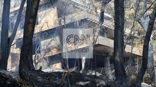 Φωτιές Αττική: Σε ύφεση τα μέτωπα - Αποκαρδιωτική η εικόνα καταστροφής