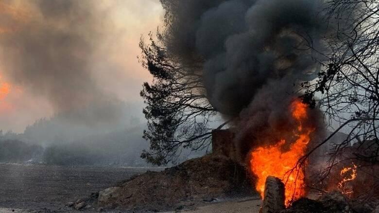 Φωτιές Εύβοια: Σαρώνει η πύρινη λαίλαπα - Στις φλόγες Βασιλικά και Βούτας