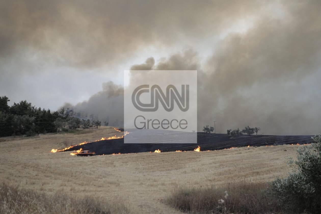 https://cdn.cnngreece.gr/media/news/2021/08/07/277141/photos/snapshot/232836332_1505470186469893_7388812969828959168_n.jpg