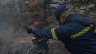 Φωτιά Αρκαδία: Απειλείται η Γορτυνία - Πύρινο μέτωπο στη Μεγαλόπολη