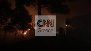 Φωτιές Αττική: Σε θέσεις μάχης για το φόβο αναζωπυρώσεων - Περιπολίες ΕΛ.ΑΣ. και Στρατού στα καμένα