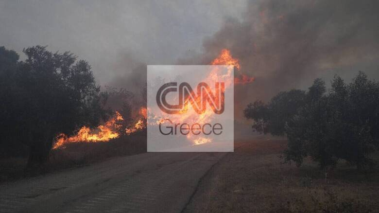 Φωτιά Εύβοια: Σε κίνδυνο αρκετά χωριά του νησιού - Τιτάνια μάχη με τις φλόγες