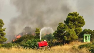 Με μειωμένη ένταση οι φωτιές στη Βόρεια Αττική - Περιπολίες επιτήρησης στα καμένα
