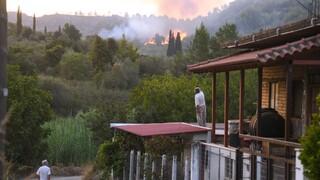 Φωτιά στην Ηλεία: Ολονύχτια μάχη με τις φλόγες σε Αχλαδινή και Δούκα - Στη μάχη εναέρια μέσα