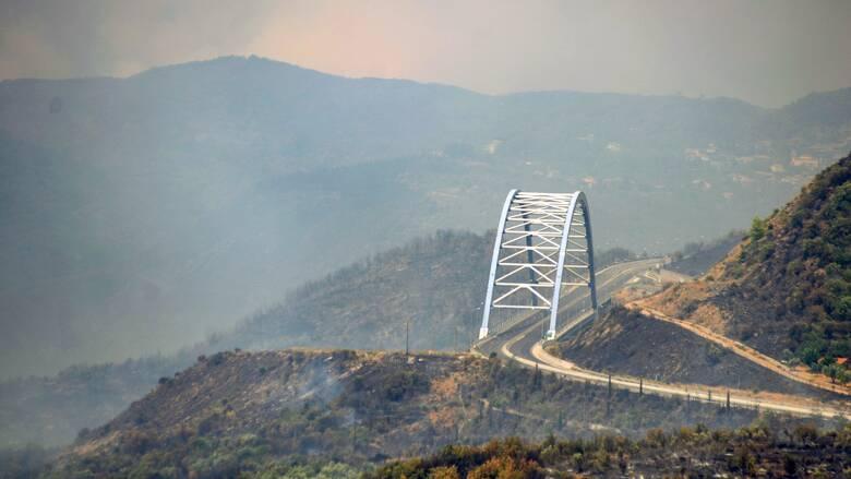 Μαίνονται οι πυρκαγιές σε Λακωνία και Μεσσηνία
