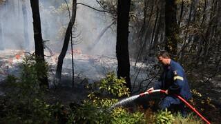 Φωτιά Αττική: Εκτός κινδύνου ο πυροσβέστης που τραυματίστηκε στην Πάρνηθα - Τον παρέλαβε ελικόπτερο