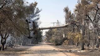 Φωτιές - ΔΕΔΔΗΕ: Συνεχίζεται η αποκατάσταση ηλεκτροδότησης - Ποιες περιοχές δεν έχουν ρεύμα