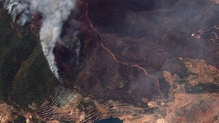 Φωτιές: Τουλάχιστον 650.000 στρέμματα οι καμένες εκτάσεις σε Εύβοια, Αττική και Λακωνία