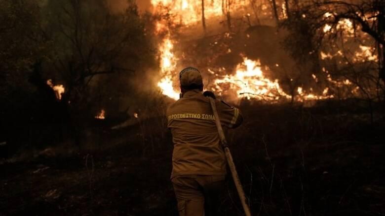 Φωτιά Μάνη: Στην ορεινή περιοχή της Δεσφίνας το πύρινο μέτωπο