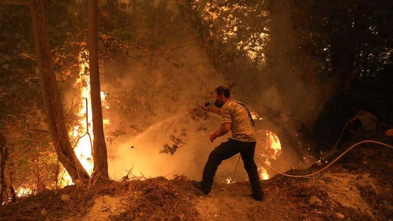 Φωτιά - Ανατολική Μάνη: Με επίγειες δυνάμεις η κατάσβεση στην δύσβατη Δεσφίνα