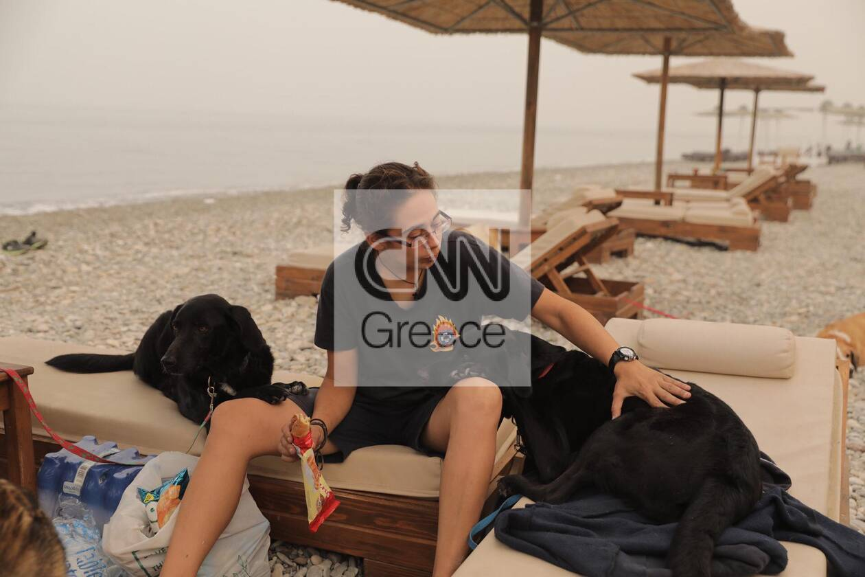 https://cdn.cnngreece.gr/media/news/2021/08/09/277295/photos/snapshot/fotia-katoikidia-2.jpg