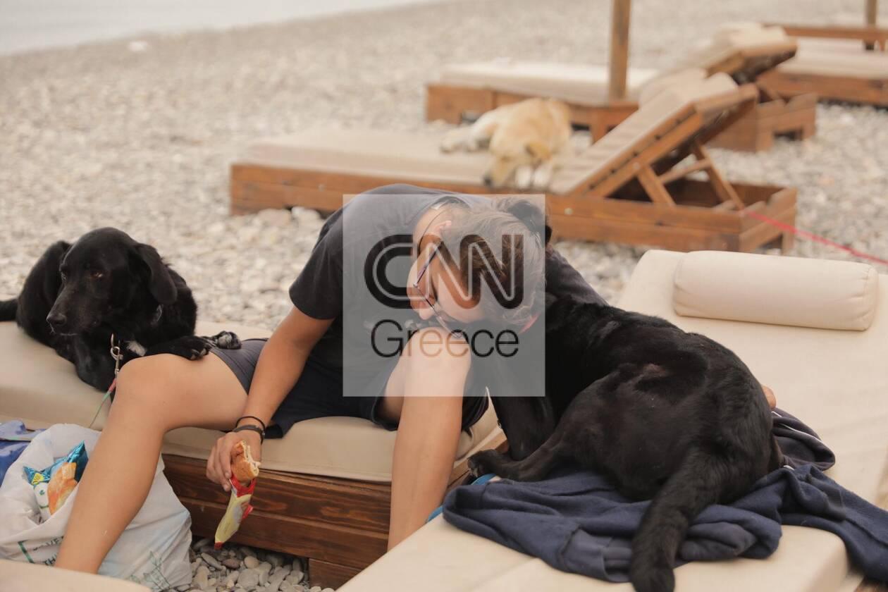 https://cdn.cnngreece.gr/media/news/2021/08/09/277295/photos/snapshot/fotia-katoikidia-3.jpg