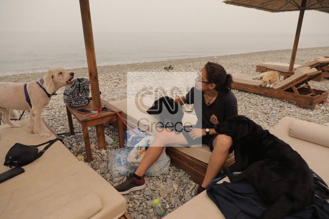 https://cdn.cnngreece.gr/media/news/2021/08/09/277295/photos/snapshot/fotia-katoikidia.jpg