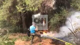 Φωτιά στη Βόρεια Εύβοια: Σκληρή μάχη δίνουν κάτοικοι και πυροσβέστες στο Αρτεμίσιο