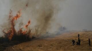 Πυρκαγιές στην Ελλάδα: Πώς να προσφέρουμε βοήθεια στους πληγέντες