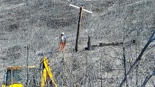 ΔΕΔΔΗΕ: Συνεχίζεται η προσπάθεια αποκατάστασης της ηλεκτροδότηση στις πυρόπληκτες περιοχές