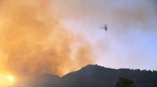 Φωτιά Ηλεία: Αγωνία για τις αναζωπυρώσεις σε Λάσδικα, Μηλιές και Βασιλάκι