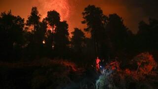 Φωτιά Αρκαδία: Δύσκολη νύχτα στη Γορτυνία - Μάχη με τις αναζωπυρώσεις