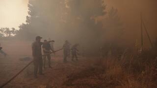 Όγδοη μέρα ολέθρου στην Εύβοια - Ανθρώπινες αλυσίδες για να σώσουν τα χωριά